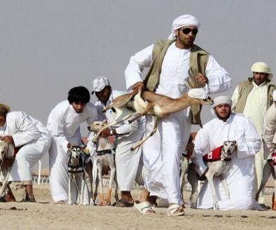 中国对阿拉伯国家政策文件