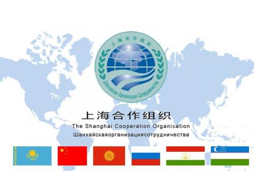 """上合组织秘书长:""""上海精神""""推动地区经济合作"""