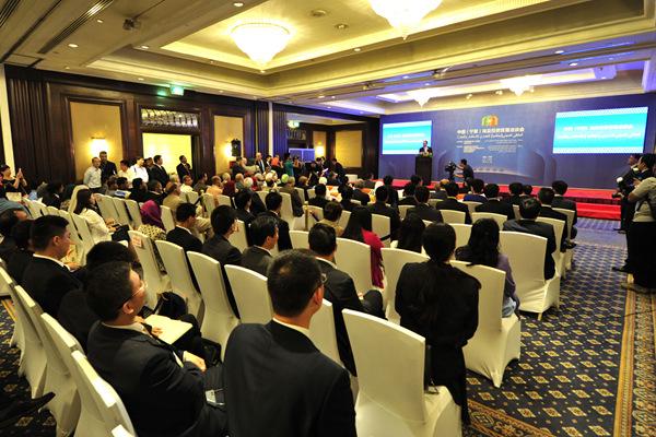 中国(宁夏)埃及投资贸易洽谈会在开罗举行
