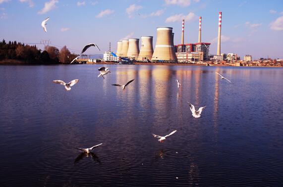 宁夏重点行业企业减排项目有序推进