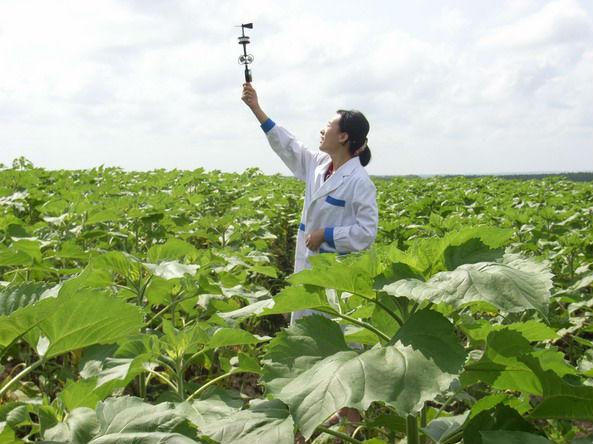 甘肃:拓展气象服务三农新领域