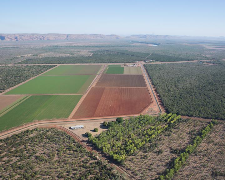 中资企业成为澳北部农业开发主力军