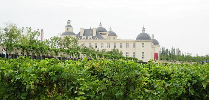贺兰山东麓国际葡萄酒博览会9月7日至9日将在宁夏举办
