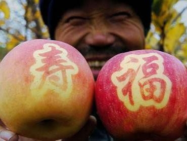 第三届平凉金果博览会在泾川县开幕