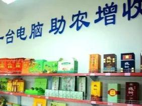 """陇南市获""""全国电商扶贫示范市""""称号"""