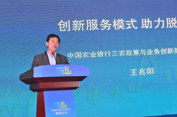 王兆阳:中国农业银行探索金融扶贫新模式
