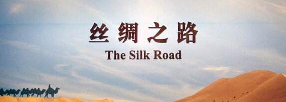 打造中阿网上丝绸之路宁夏枢纽