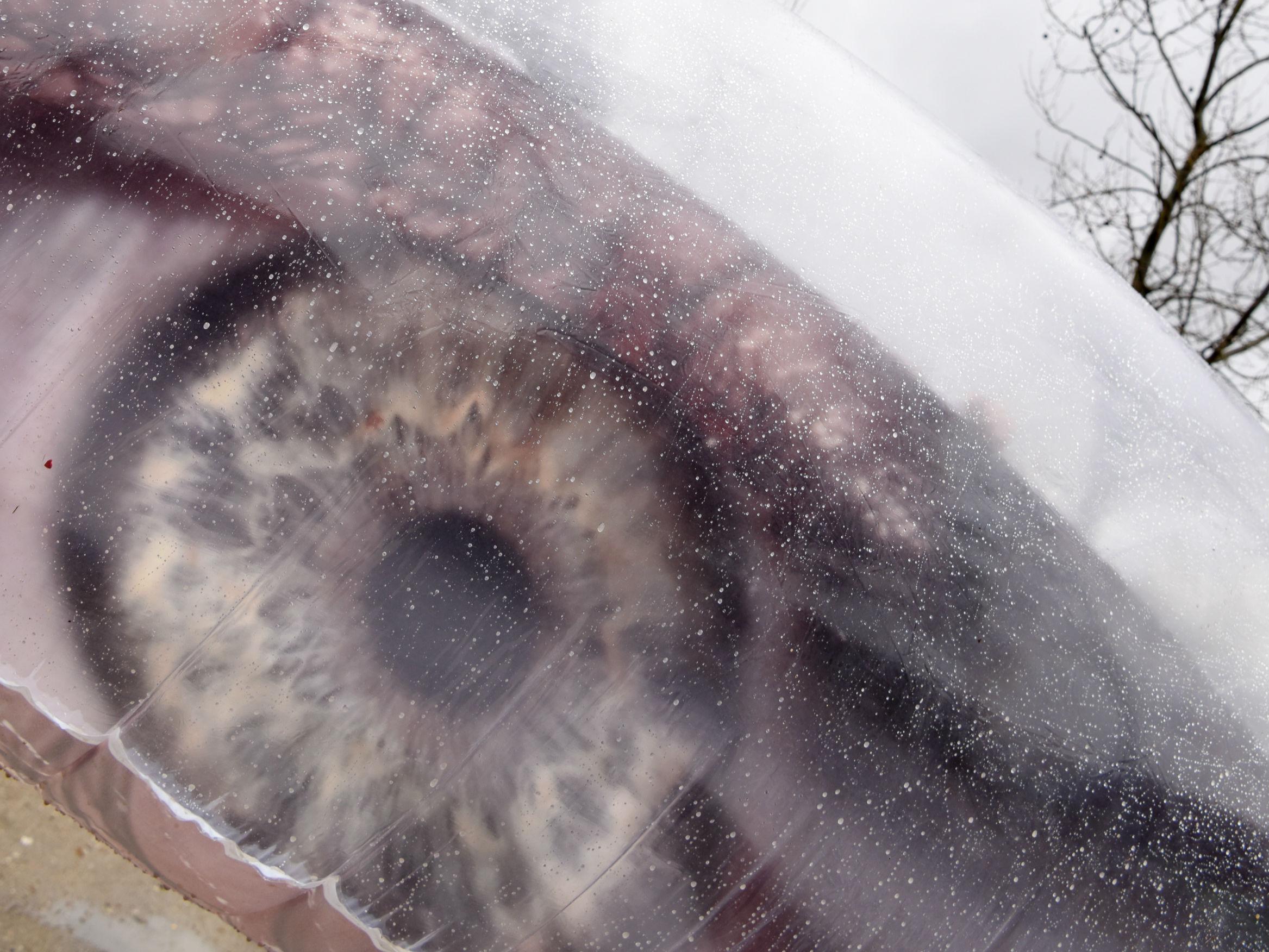 """中国女艺术家在法国巴黎上演""""一千只眼睛""""行为艺术"""