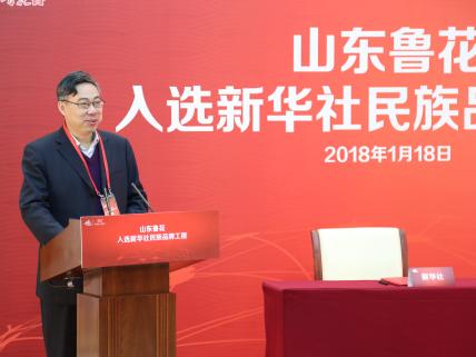 姜卫红:民族品牌助推现代化经济发展体系建设