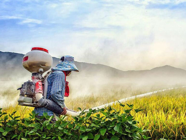 印度农药生产者协会要求禁止进口原药未获登记的农药制剂产品