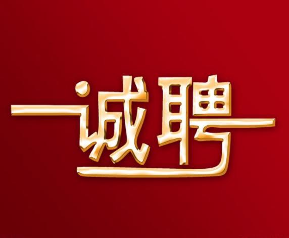 中国经济信息社新华丝路事业部招聘公告