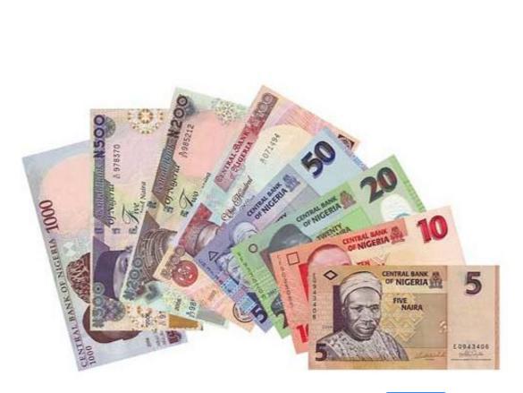 尼日利亚汇率风险居高不下