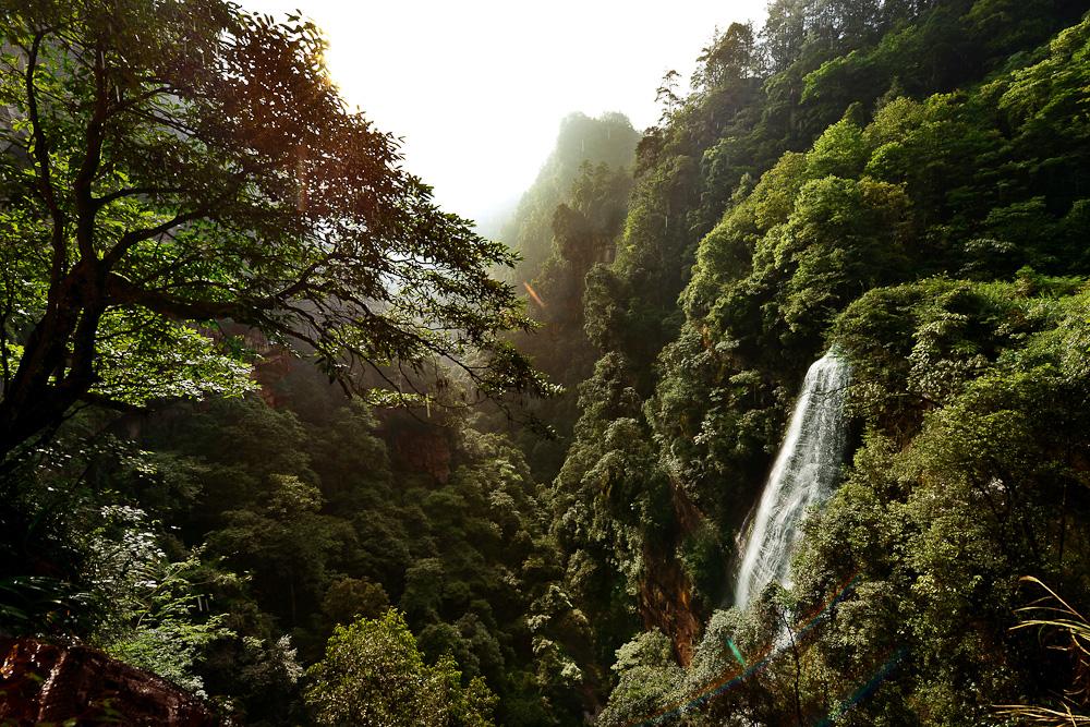 黄荆环岩绝情谷晨景 成林摄