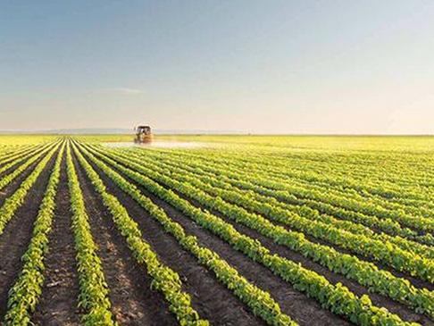 """中国与""""一带一路""""沿线国家 扩大农业国际合作"""