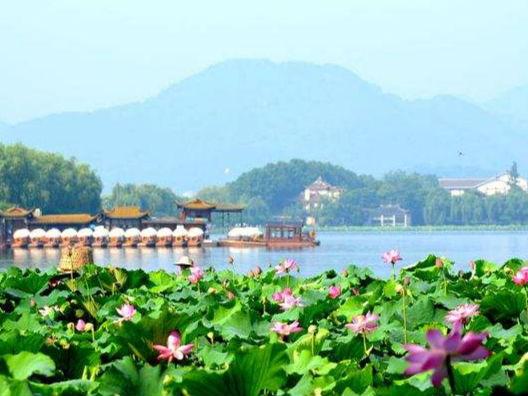 宜居在中国