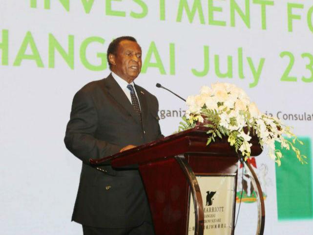 中非莱基参加尼日利亚商务投资论坛