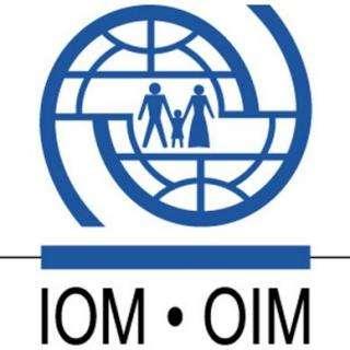 国际移民组织