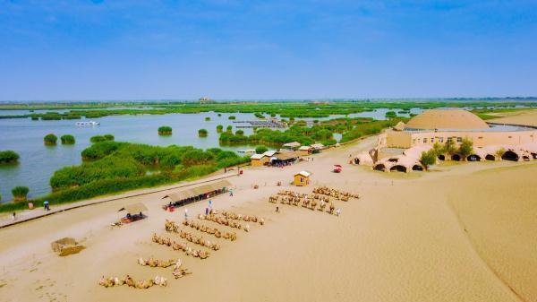 沙水相依的沙湖美景