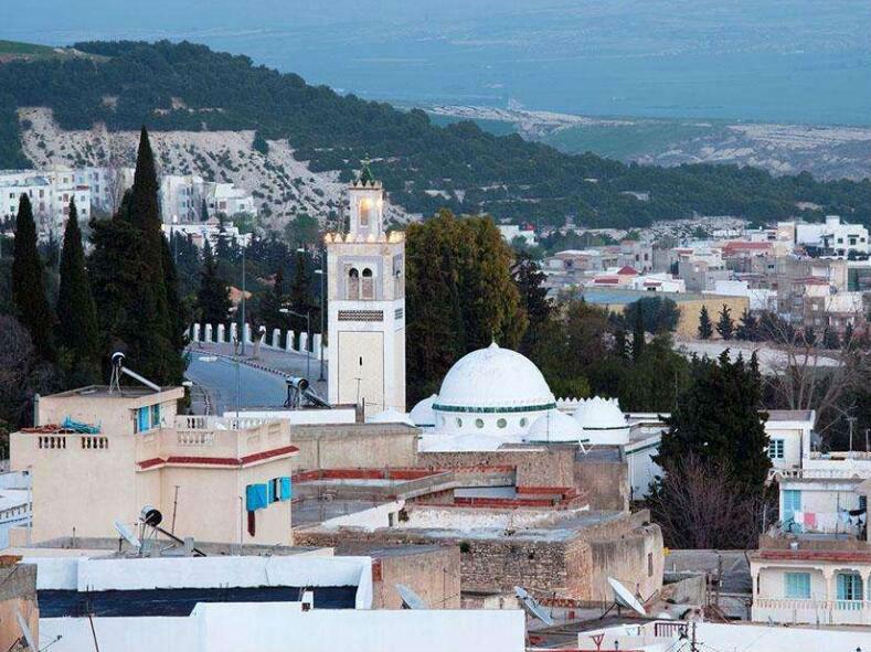 2018年突尼斯出口同比增长23.3%