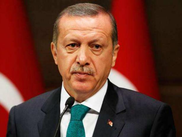 土耳其总统访德以期改善双边关系