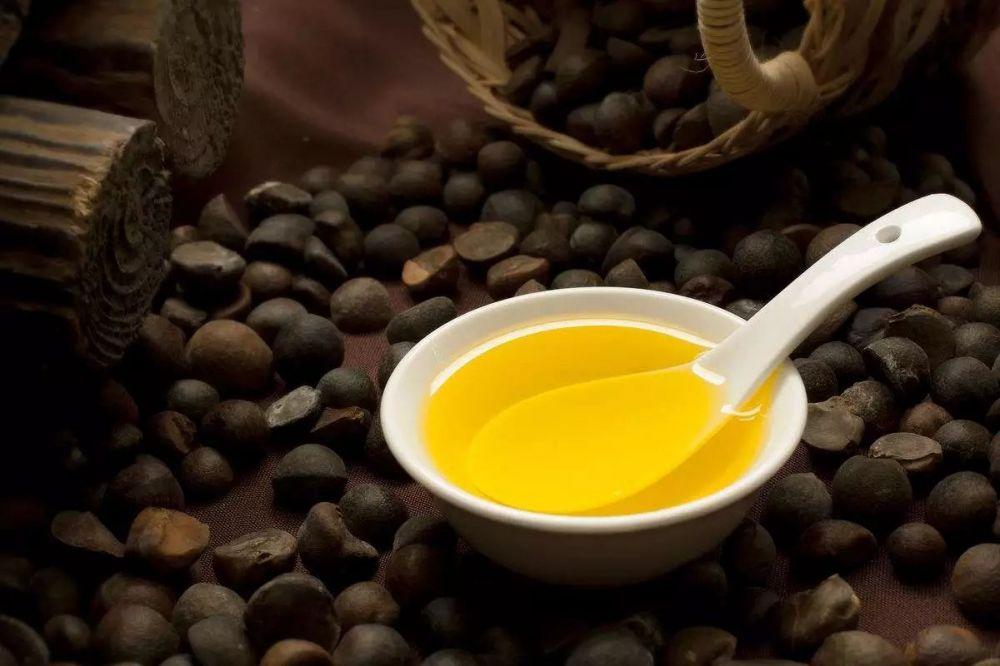 中国•常山油茶博览会 第三届油茶文化节暨浙江省油茶产业现场会开幕式