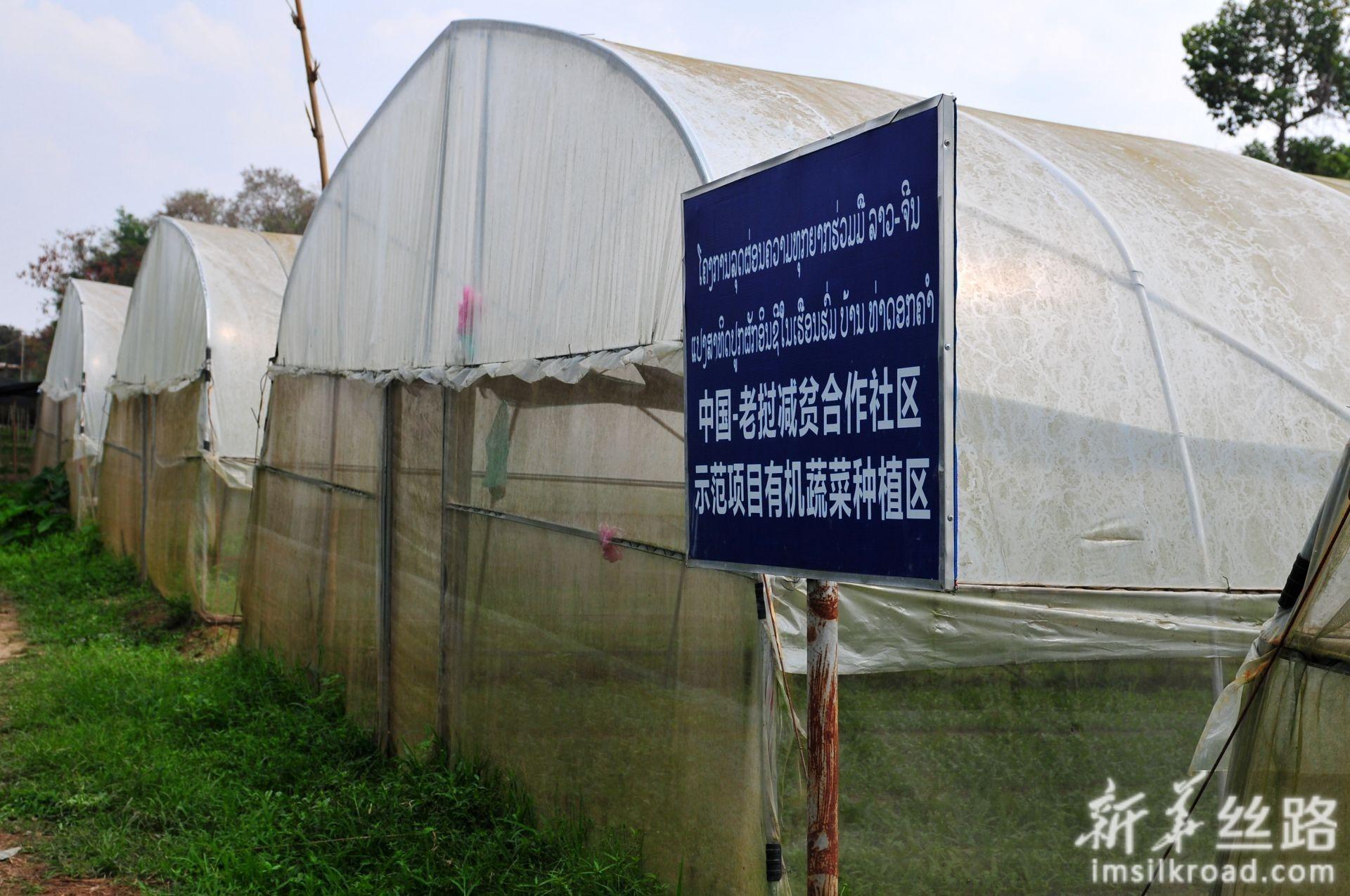 2月28日在老挝首都万象北部的金花村拍摄的中国-老挝减贫合作社区示范项目有机蔬菜种植区。新华社记者 章建华 摄