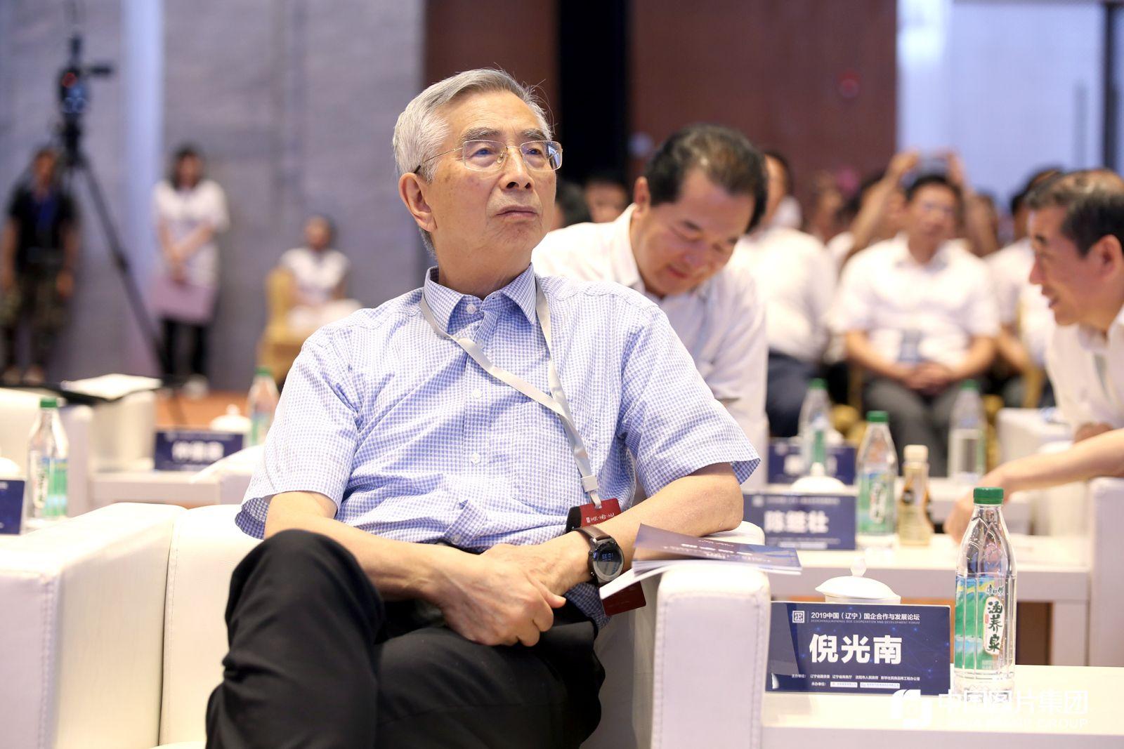 中国工程院院士倪光南。