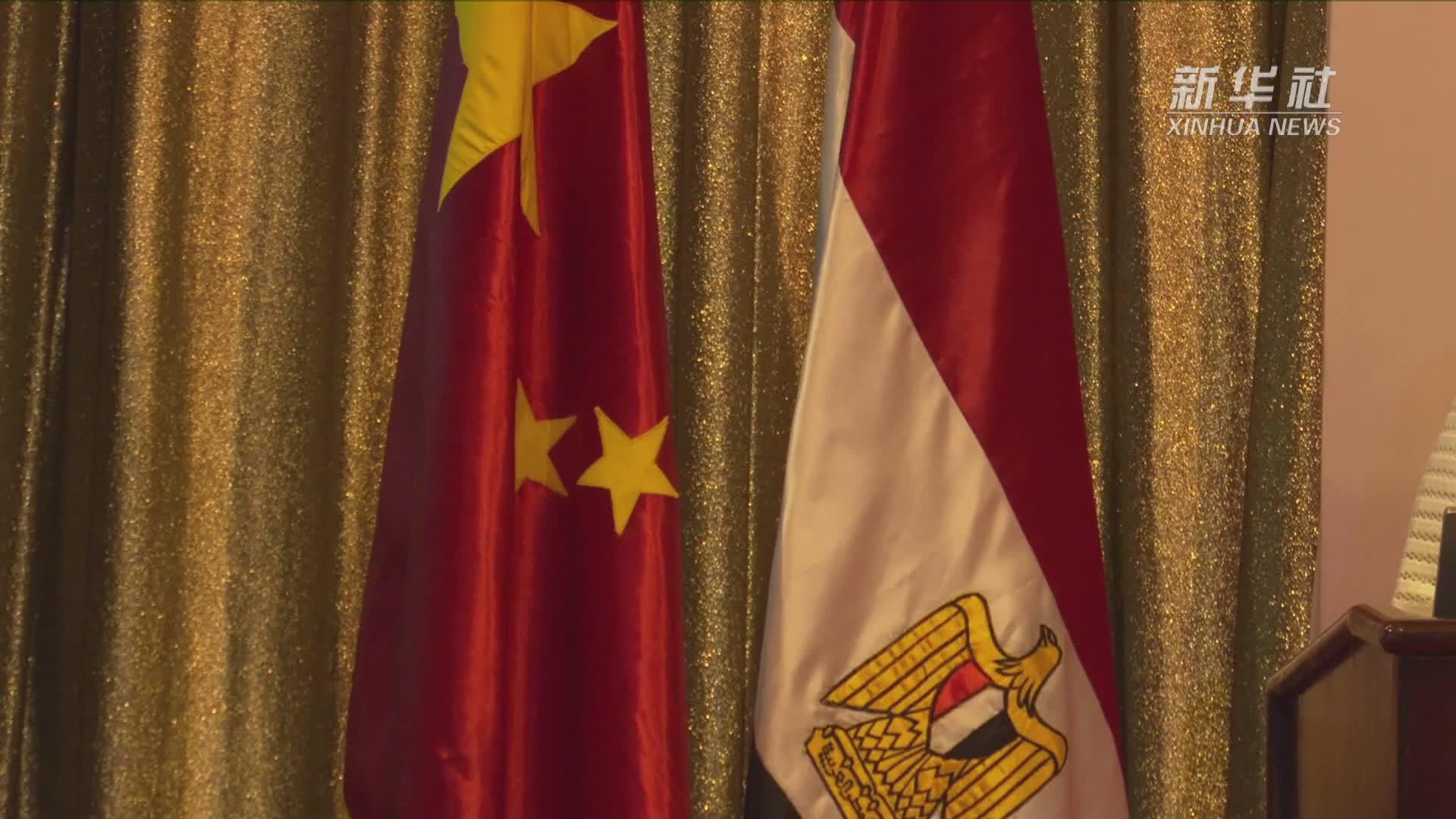 """""""一带一路""""与中非合作新实践国际论坛在埃及举行"""