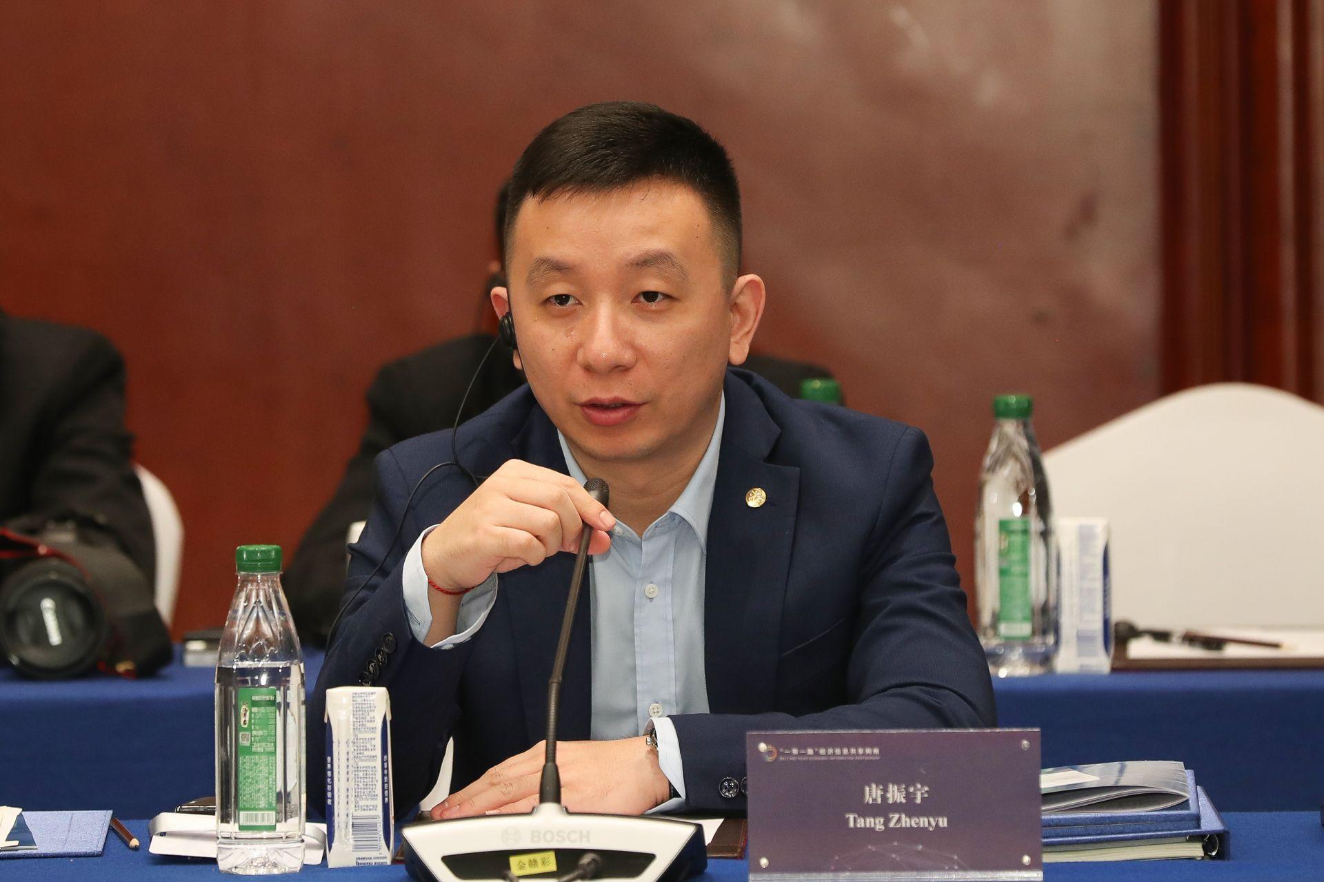 唐振宇  中国对外承包工程商会战略咨询部副主任