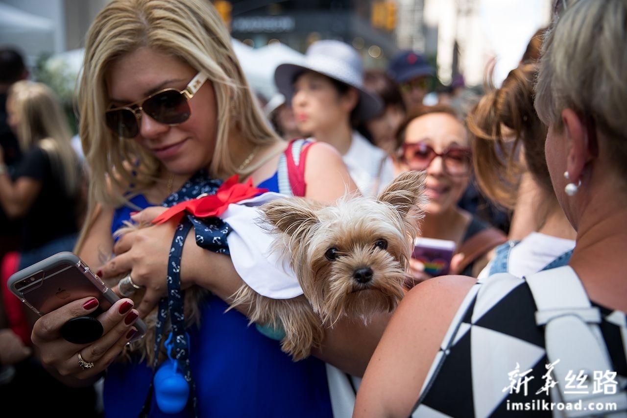 """7月14日,在美国纽约,一名女子携爱犬参加""""巴士底日""""庆祝活动。新华社发(郭克摄)"""