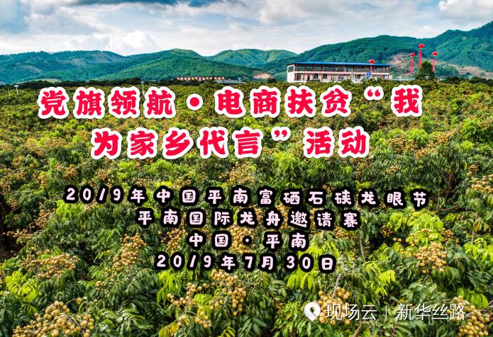2019年中国平南富硒石硖龙眼节·平南国际龙舟邀请赛