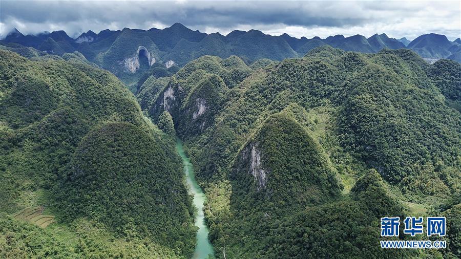 这是贵州紫云县格凸河风景名胜区景色(2018年9月1日无人机拍摄)。新华社记者 欧东衢 摄