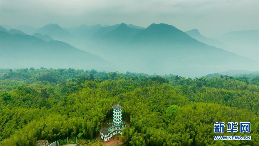 这是贵州赤水竹海国家森林公园(2017年5月10日无人机拍摄)。新华社记者 欧东衢 摄