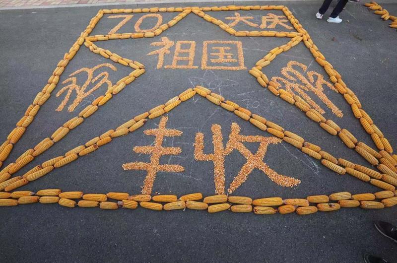 【组图】青铜峡:黄河之滨富饶地 农家玉米晒丰收