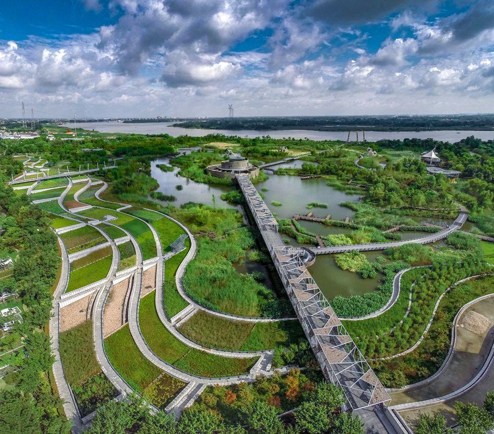 滨江湿地公园
