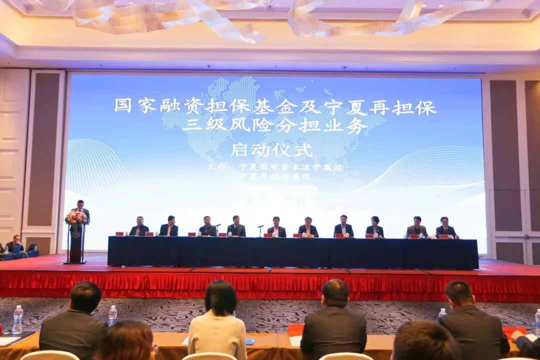 """国家金融资源将进入宁夏小微企业和""""三农""""领域 缓解融资难、融资贵"""