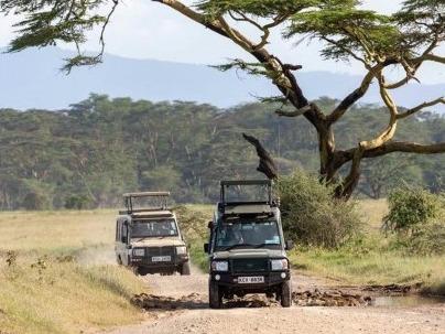 肯尼亚纳库鲁国家公园假期引游人