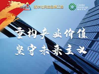 雪松控股:重构产业价值 坚守未来主义