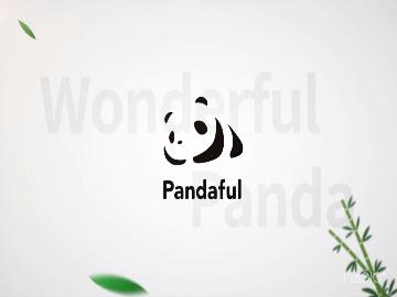 大熊猫运动健将