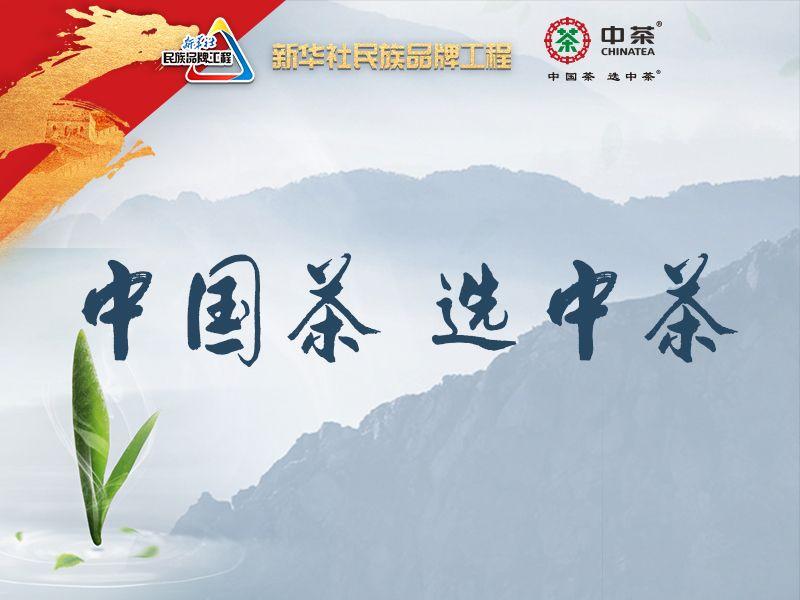 中茶公司:中国茶 选中茶