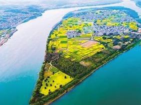 姹紫嫣红桐洲岛