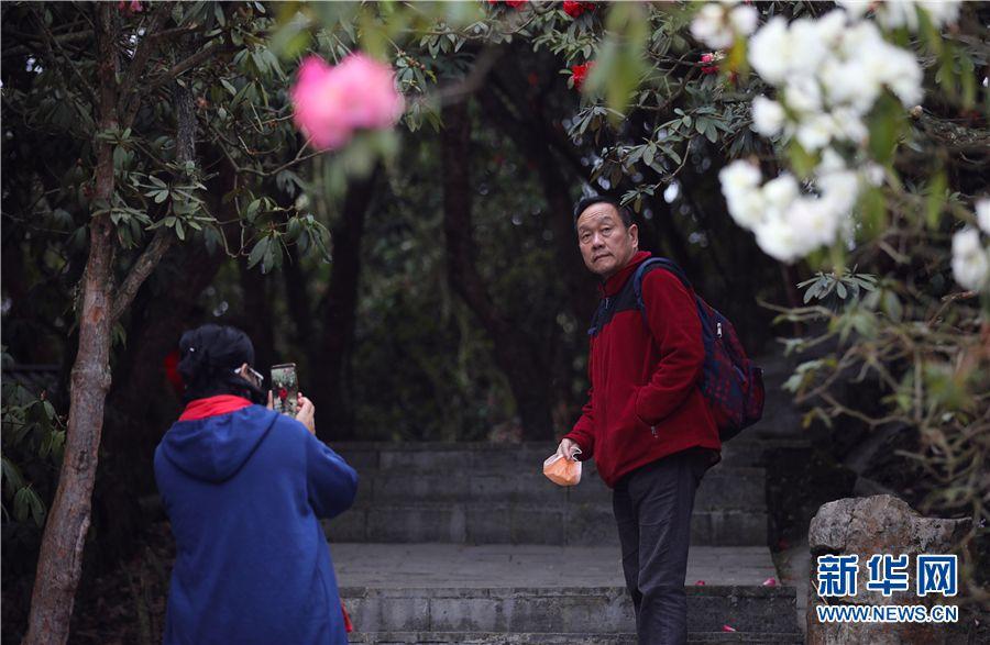 3月28日,游客在景区内摘掉口罩赏花拍照。新华网 卢志佳 摄
