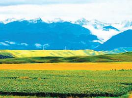 新疆尼勒克 :出门即景 行走是游