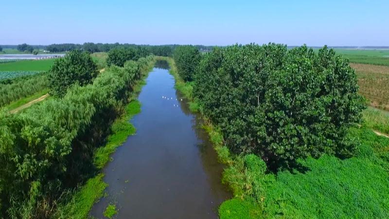 安徽蚌埠:强化淮河流域生态修复 建设生态文明新样板