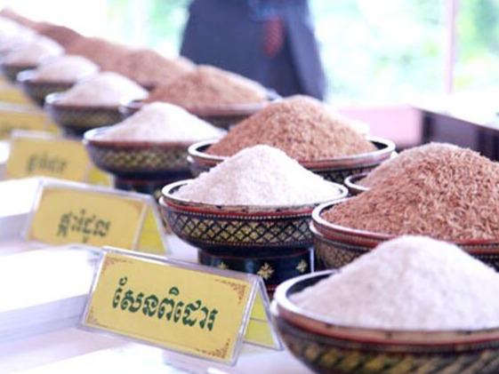 2020年上半年柬埔寨大米出口同比增加41%