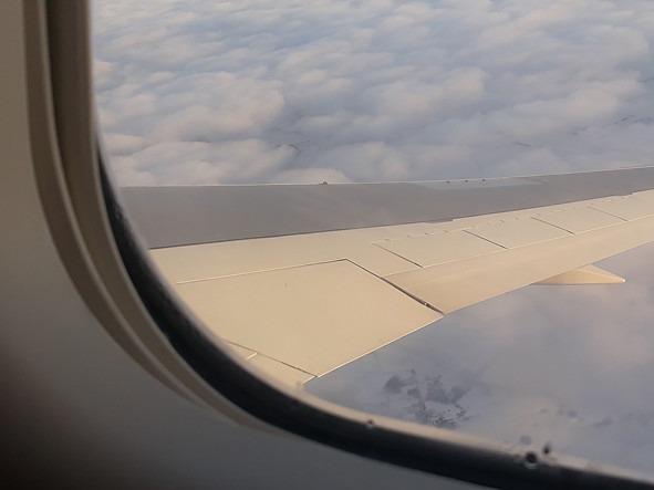 俄罗斯政府允许白俄罗斯公民通过航空口岸入境俄罗斯