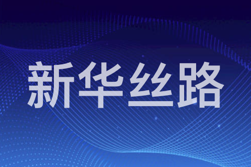多米尼克驻华大使马丁·查尔斯接受新华丝路网记者采访