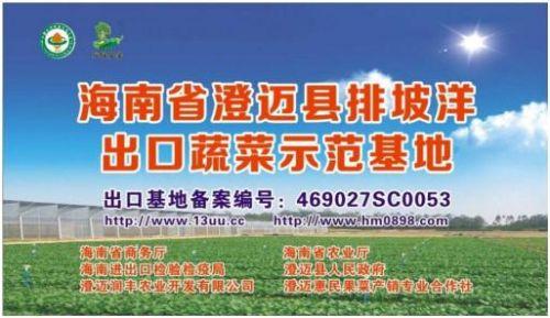上图为澄迈县排坡洋2009年通过供港澳蔬菜备案种植基地备案。来源:澄迈县农业局