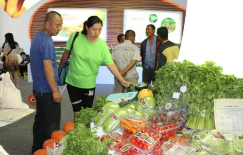 顾客选购绿康源公司的有机蔬菜
