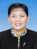 张梅颖 十一届全国政协副主席,民盟中央原副主席